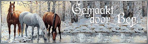 winter+20+banner.jpg